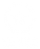 veteran_logo_white